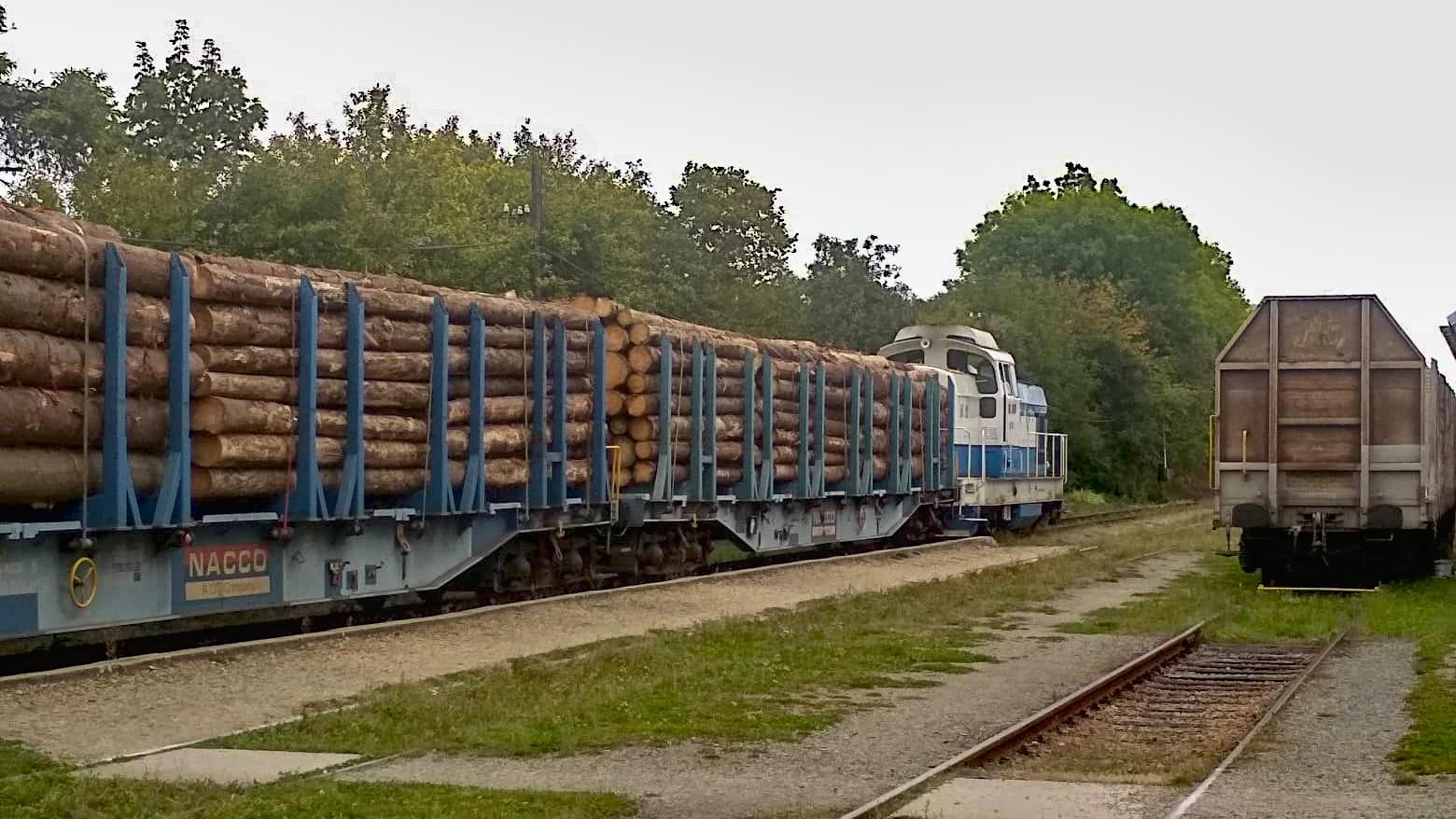 Nákladní vlak se dřevem na Jemnické dráze.